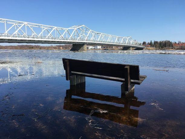 Nordbergin möljällä Tornion keskustassa jokivesi on tavoittanut ensimmäiset rantapenkit.