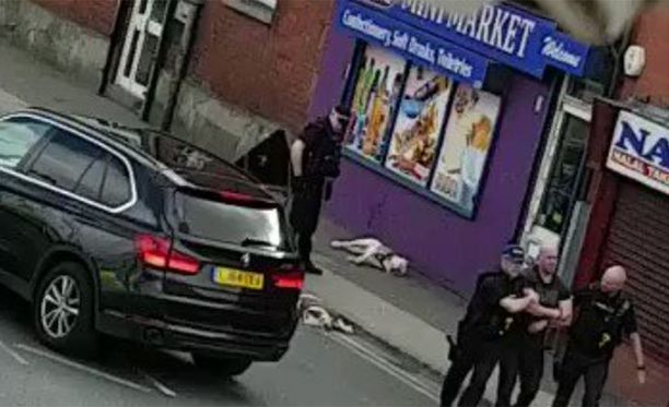 Poliisi ampui koirista kaksi. Yksi mies pidätettiin.