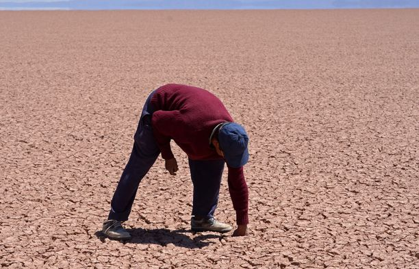 Boliviassa El Nino on pahentanut kuivuutta.