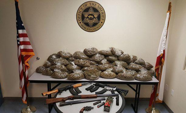 Tällainen määrä marihuanaa tytön huoneesta löytyi.
