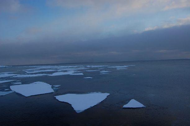 Sulavaa merijäätä arktisella alueella. Kuva vuodelta 2009.