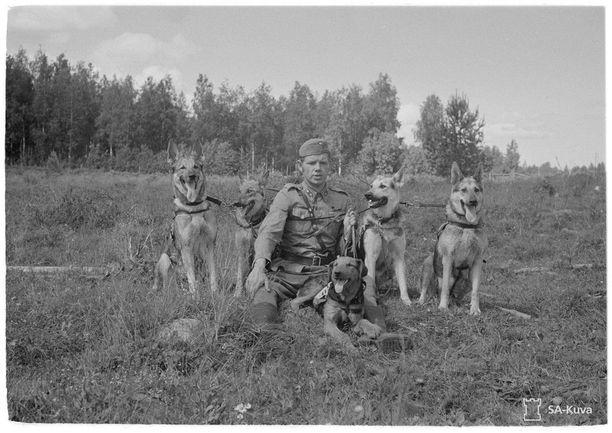 Luutnantti Pentti Luotola itse kasvattamiensa ja kouluttamiensa koirien kanssa. Kuvassa Sota-Siro (vas.), Iro, Poukku, Wulf ja Andy, jotka kaikki palvelivat sotakoirina. Kuvan on ottanut luutnantti Tapio Piha.