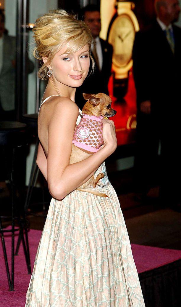 Kunhan testasimme huomiokykyäsi. Tässä kuvassa kainalossa ei keiku bilelaukku, vaan pikkuruinen chihuahua-koira.