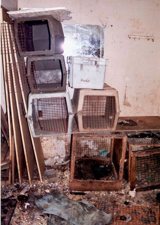Pentutehtaissa yleistä on, että koirat pidetään hyvin ahtaissa tiloissa. Asuinoloista ei huolehdista sen enempää kuin koiristakaan. Kuva suomalaisesta pentutehtaasta.