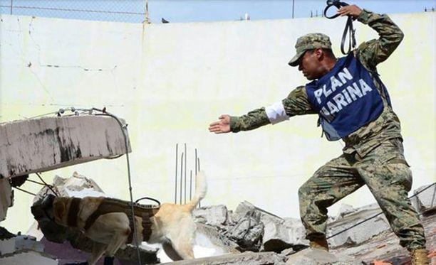 Frida työssään maanjäristyksen sorruttamien talojen raunioilla.