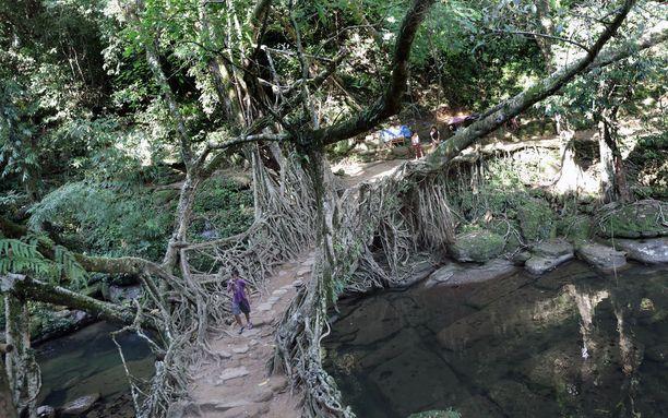 Perinteinen siltatekniikka toimii yhä.