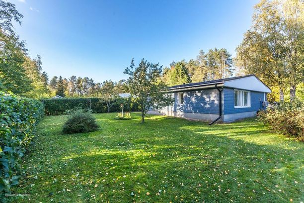 Iso piha ja 120-neliön talo - ei hassumpi perhekoti Oulussa.