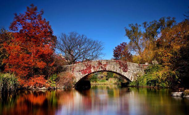New Yorkin Central Park lumoaa etenkin syksyllä.
