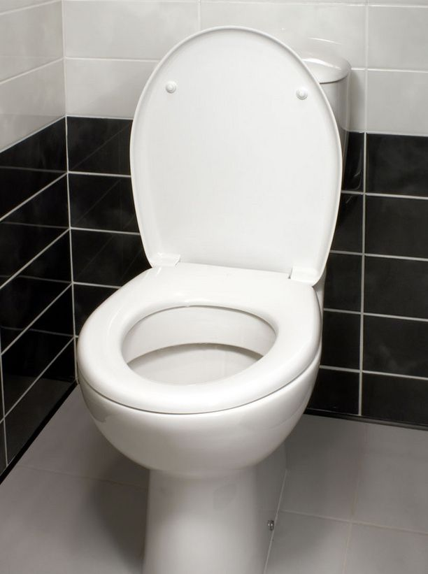 Marraskuinen vessapäivä ei ole pelkkää toilettihuumoria, vaan taustalla on hyväntekeväisyys.