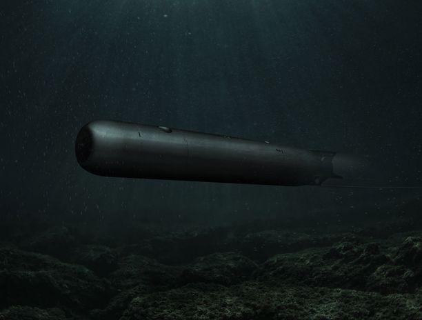 Suomen Merivoimien hankkima kevyttorpedo on hieman alle kolme metriä pitkä ja siihen mahtuu noin 50 kiloa räjähdysainetta.