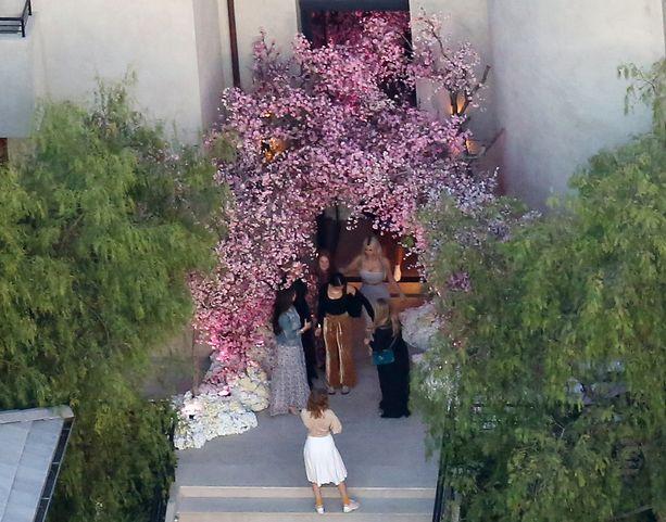 Kirsikkapuut olivat juhlissa suosittu poseeraamispaikka.