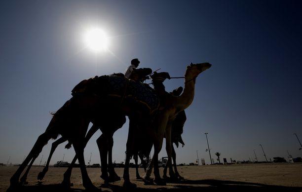 Sweihanin kaupungissa tehtiin sunnuntaina Arabiemiraattien kesäkuun lämpöennätys. Kuvituskuva Sweihanin aavikolta.