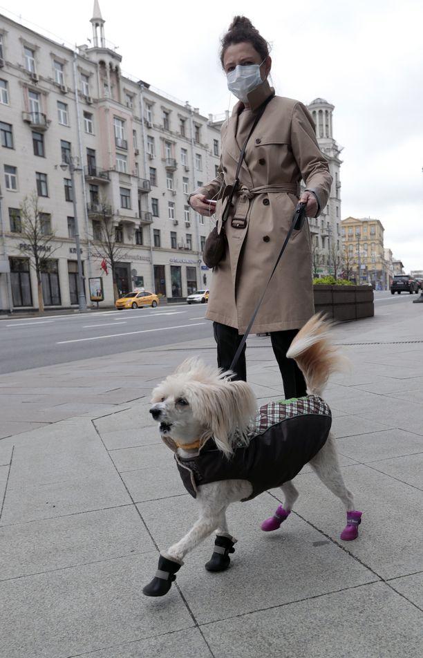 Nainen ulkoilutti koiraa Moskovan keskustassa Tverskaja-kadulla perjantaina.