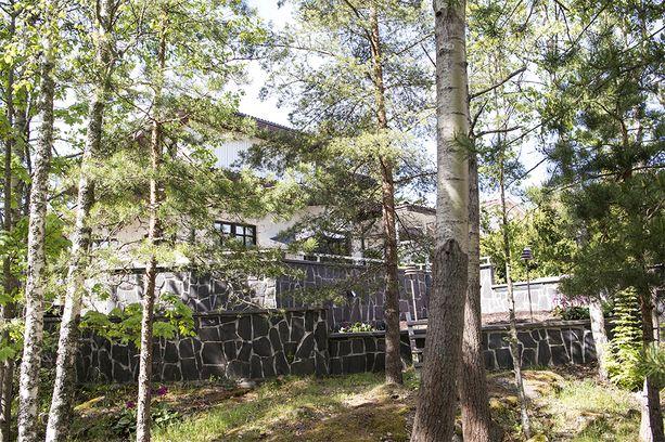 Piha ja tontin laidalla oleva pieni metsä ovat yksi talon eduista.