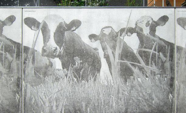 Arkkitehtitoimisto Helamaa ja Pulkkinen suunnittelema As Oy Helsingin Tervapääskynen. Kuvion suunnitelleen Tapio Vanhatalon idea lähti aiemmin paikalla sijainneesta eläinlääketieteellisen tiedekunnan navetasta.