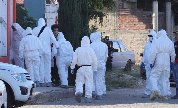 Syrjäiseltä maatilalta löytyi 43 tynnyrillistä rikkohappoa. Poliisin mukaan kadonneet opiskelijat oli liuotettu happoon.