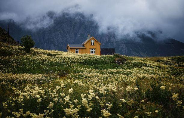 Norjan maaseudulla on kaunista. Kuva on otettu eteläisessä Norjassa sijaitsevassa Hovdenissa.