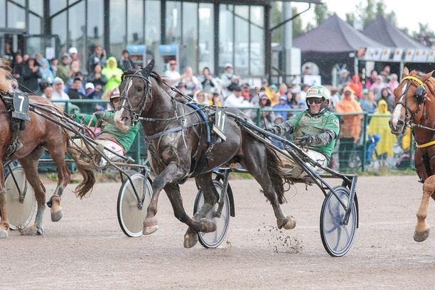 Ville Kalle on voittanut uransa 24 startista 11. Tällä kaudella oriin ohjissa on ollut Suomen menestyneimpiin ohjastajiin kuuluva Ari Moilanen.
