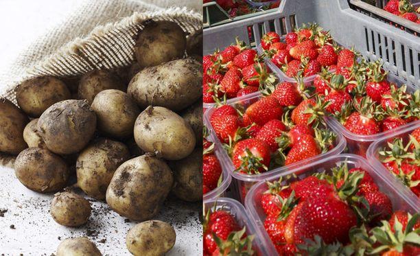 Uudet perunat ja mansikat kuuluvat kesään. Juhannuspäivä on lauantaina 23. kesäkuuta.