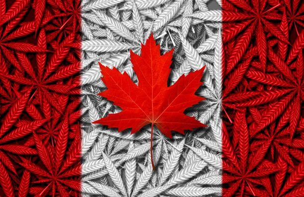 Kanadassa kannabis on nyt laillista.
