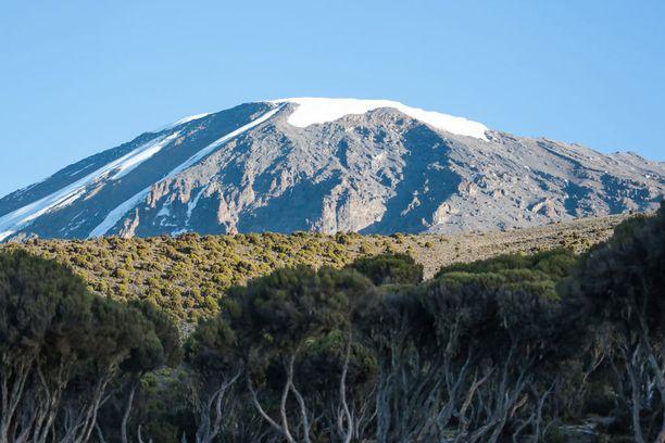 Kilimanjaron jäätiköt hupenevat hurjaa vauhtia.