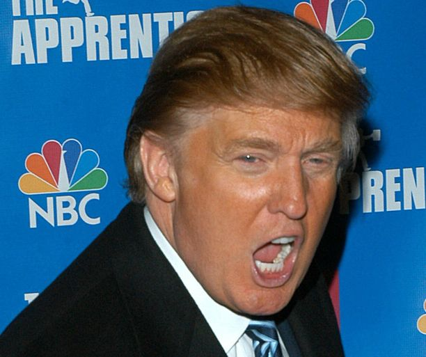 Diili-sarjassa vuonna 2004 Donald Trump nähtiin tummahiuksisena.