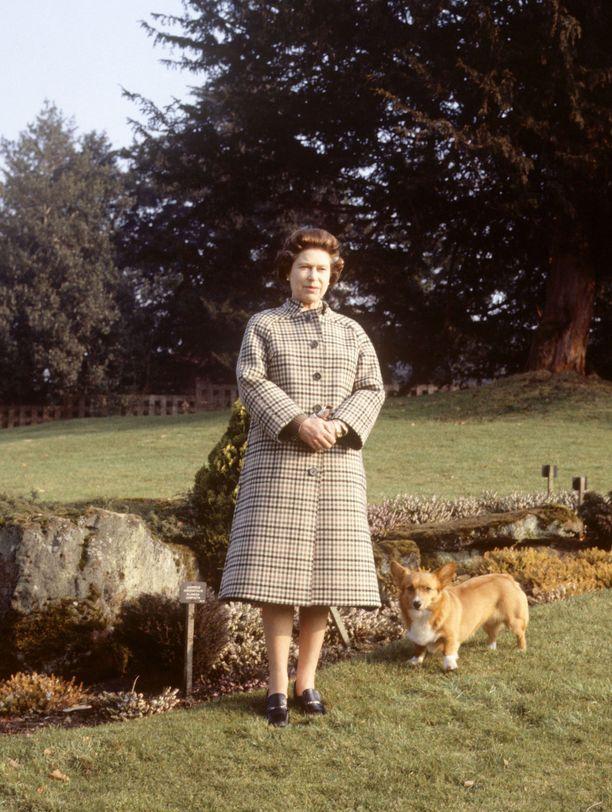 Kuningatar Elisabet ja corgit ovat olleet pettämätön parivaljakko aina vuodesta 1933 lähtien. Tässä tyylinäyte vuodelta 1982.