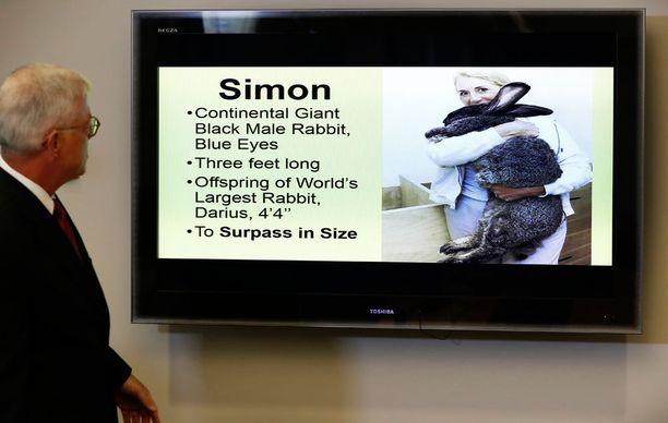 Simon oli jo yli 90 senttiä pitkä ja siitä piti tulla Darius-isäänsäkin suurempi.