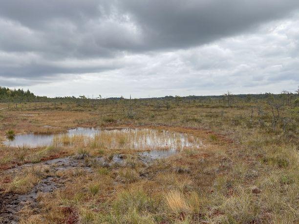 Valkmusan kansallispuisto löytyy Kymenlaaksosta.