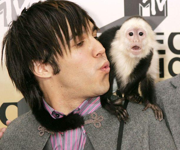 Fall Out Boyn Pete Wentz otti tämän kaverin avecikseen vuonna 2006.