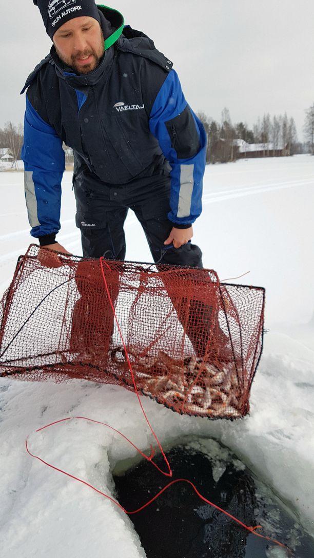 – Särkiä nousee noin 10 000 kiloa talvessa, Konsta Kankaala kertoo.