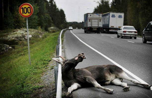 TURMA Onnettomuuksilta tieliikenteessä vältytään parhaiten ajamalla letkassa ja pitämällä hermot kurissa.