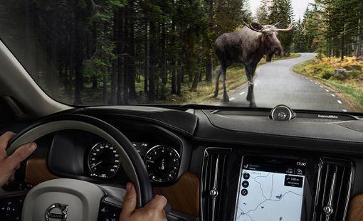 Volvon uusissa 90-sarjan autoissa on hirventunnistusjärjestelmä.