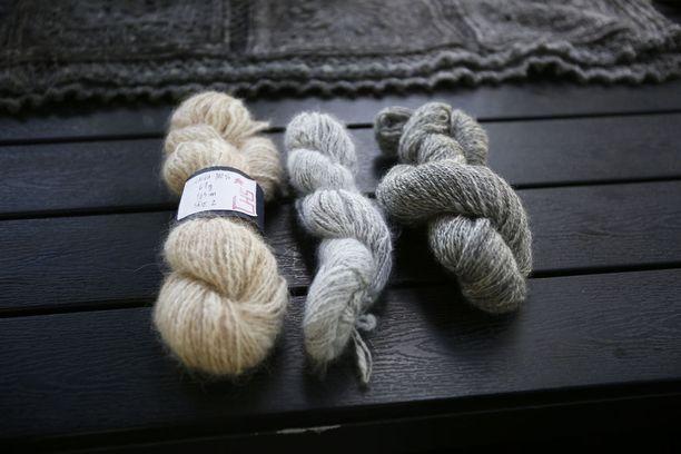 Tiina Huhtinen-Siistonen kokeilee mielellään erilaisten kuitujen kehräämistä. Vasemmalla on koirankarvalankaa, keskellä angorakania ja vasemmalla oman pässin villasta tehtyä lankaa.