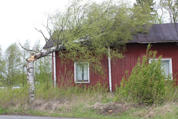 Puu kaatui talon päälle Lappajärvellä