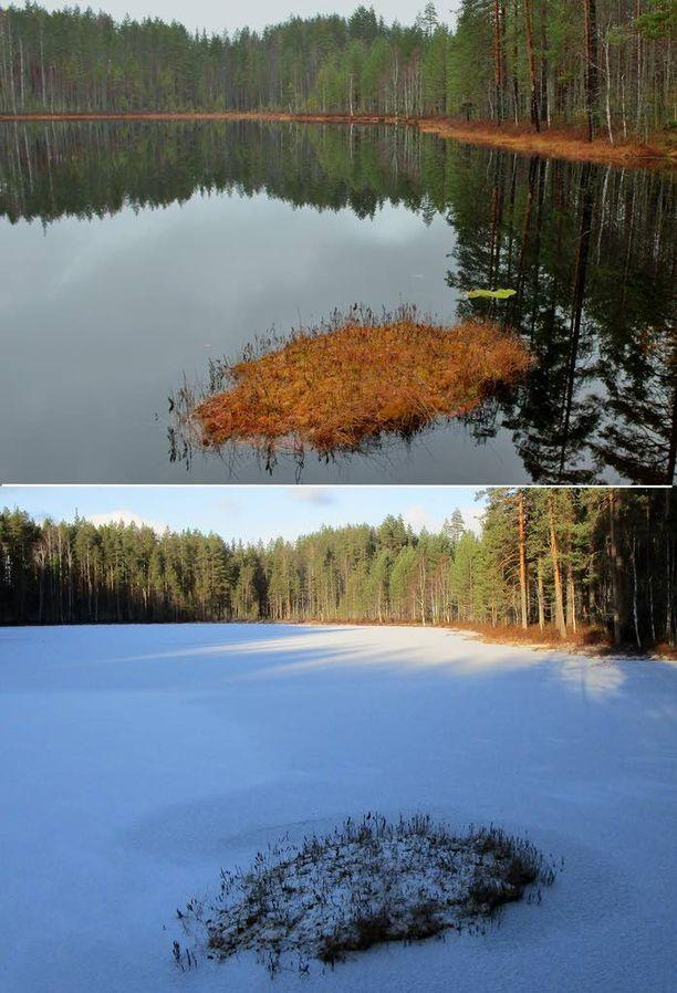 Talvi kiristi otettaan viikossa. Pohjois-Karjalan Kontiolahdella Välilampi oli sulana vielä viikko sitten, mutta viikon kuluessa lampi on saanut jää- ja lumipeitteen.