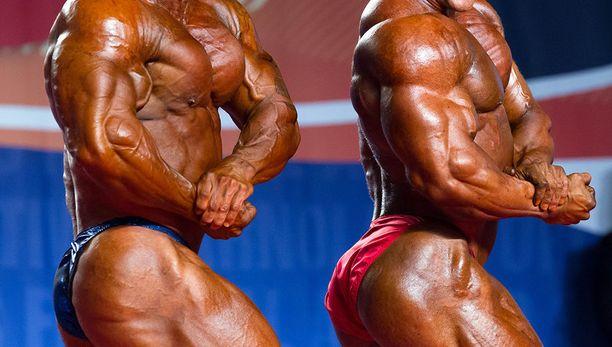 Rintamaidon hyödystä lihasten kasvattamisessa ei ole tieteellisiä todisteita.