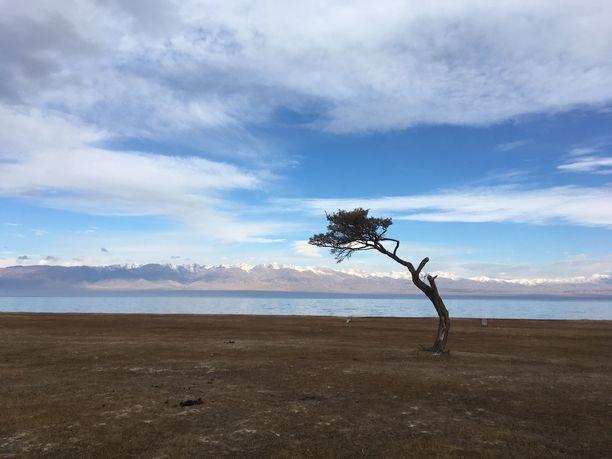 Matka Siperian ja Keski-Aasian halki sijoittui talvikuukausiin.