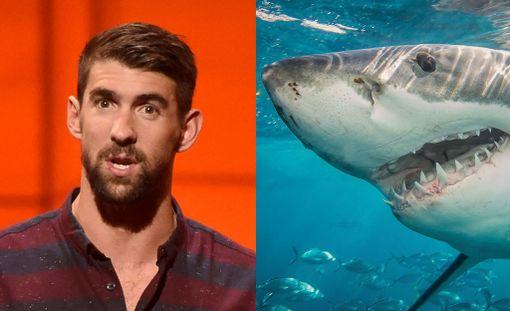 Michael Phelps on innostunut haikaloista.
