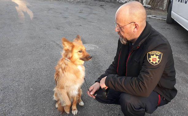 Kanta-Hämeen pelastuslaitos pelasti kuvassa olevan koiran savuisesta asunnosta.