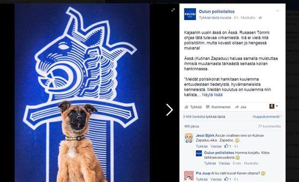 Kajaanin poliisi on saanut uuden koiranpennun, joka isoksi kasvettuaan hoitaa myös virkatehtäviä.