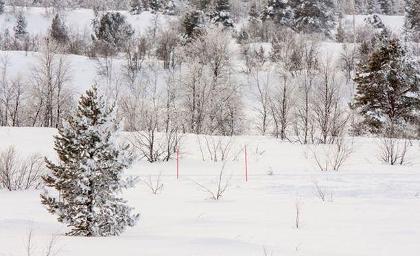 Kuvituskuva. Suomalaiset ovat huolissaan luonnon kohtalosta.