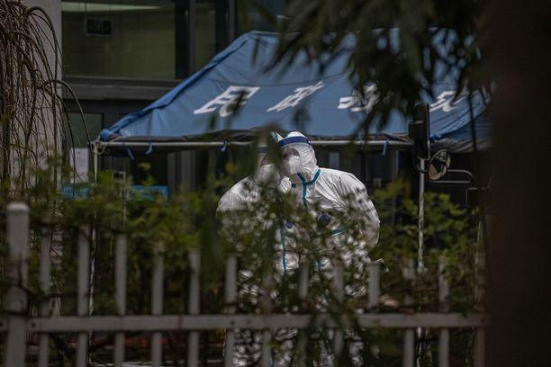 WHO-tutkijoiden vierailu Wuhanin eläintorilla on voitto terveysdiplomatialle.