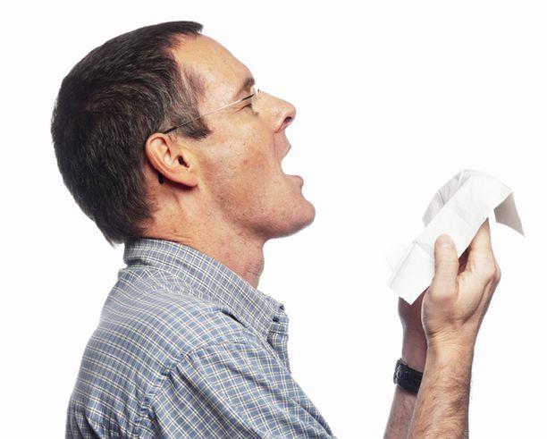 Siitepölyallergisille on avattu ilmainen allergiaoireiden seurantapalvelu internetiin.