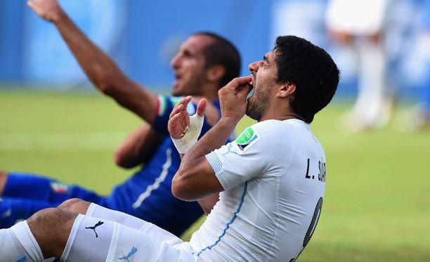 Uruguaylainen Luis Suarez puri Italian Giorgio Chielliniä vuoden 2014 MM-kisoissa.