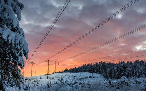 Pakkastalvi yli kuusinkertaisti sähkön hinnan Ruotsissa – ydinvoimalle uusia kannattajia