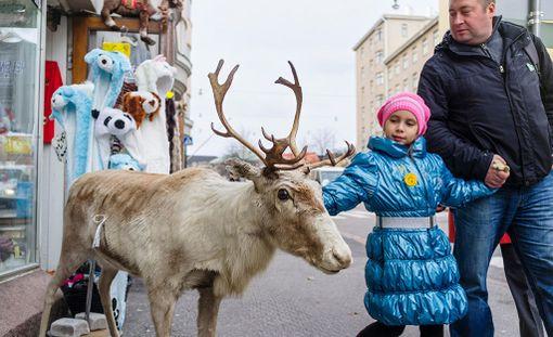 Suomeen saapui alkuvuonna hyvin matkailijoita.