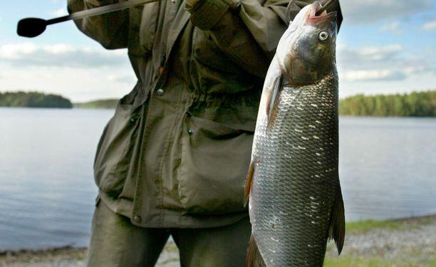 Kalanpyydysten uudet merkintävaatimukset ovat voimassa kolmatta kesää.