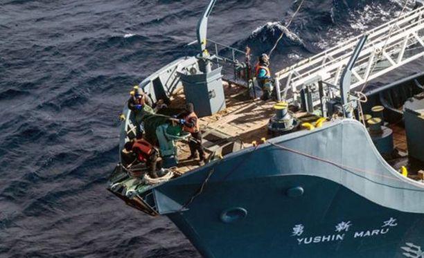 Myös alusten harppuunat peitettiin.