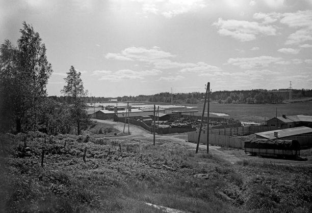 Pikku-Huopalahden maisemat olivat 1960-luvulla varsin erilaiset nykyiseen verrattuna.